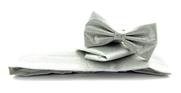 Set Kummerbund mit Fliege und Einstecktuch Silber