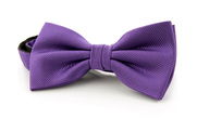 Silk Bow Tie Purple F30