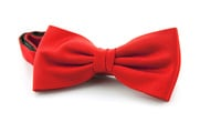 Silk Bow Tie Red F34