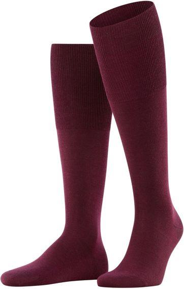 Falke Airport Knee Socks Barolo 8596