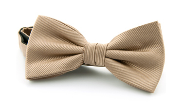 Silk Bow Tie Beige F54 photo 0