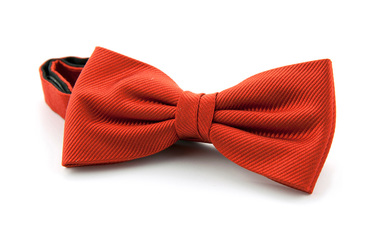 Bow Tie Silk Brique F14 photo 0