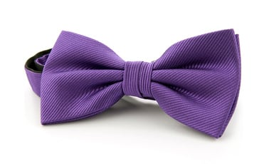 Silk Bow Tie Purple F30 photo 0