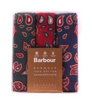 Barbour Handkerchief Paisley