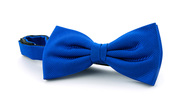 Silk Bow Tie Kobalt Blue F65