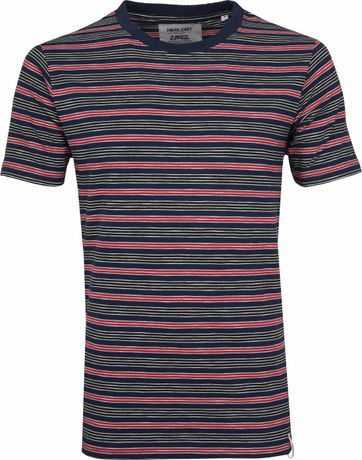 Anerkjendt T-shirt Earth Stripe