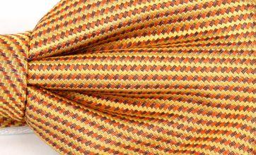Bow Tie Silk Gold 12