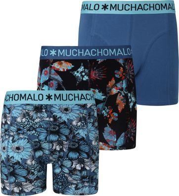 Muchachomalo Shorts 3er-Pack 2555