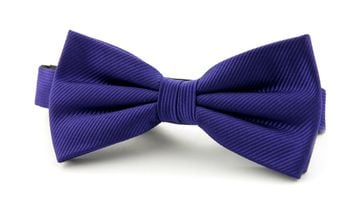 Silk Bow Tie Deep Purple F55