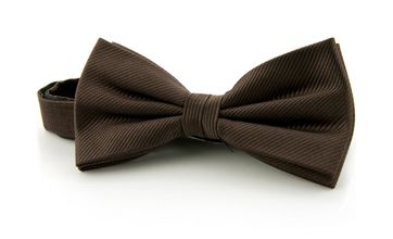 Silk Bow Tie Silk Brown F45