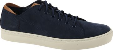 Timberland Cupsole Sneaker Blue