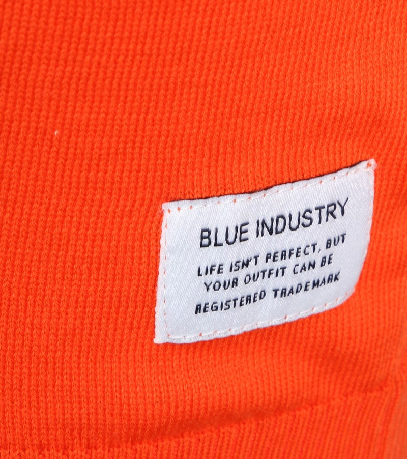 Blue Industry Oranje Trui foto 2