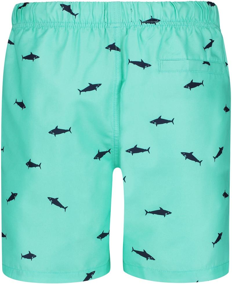 Shiwi Mako Swimshorts Turquoise photo 1