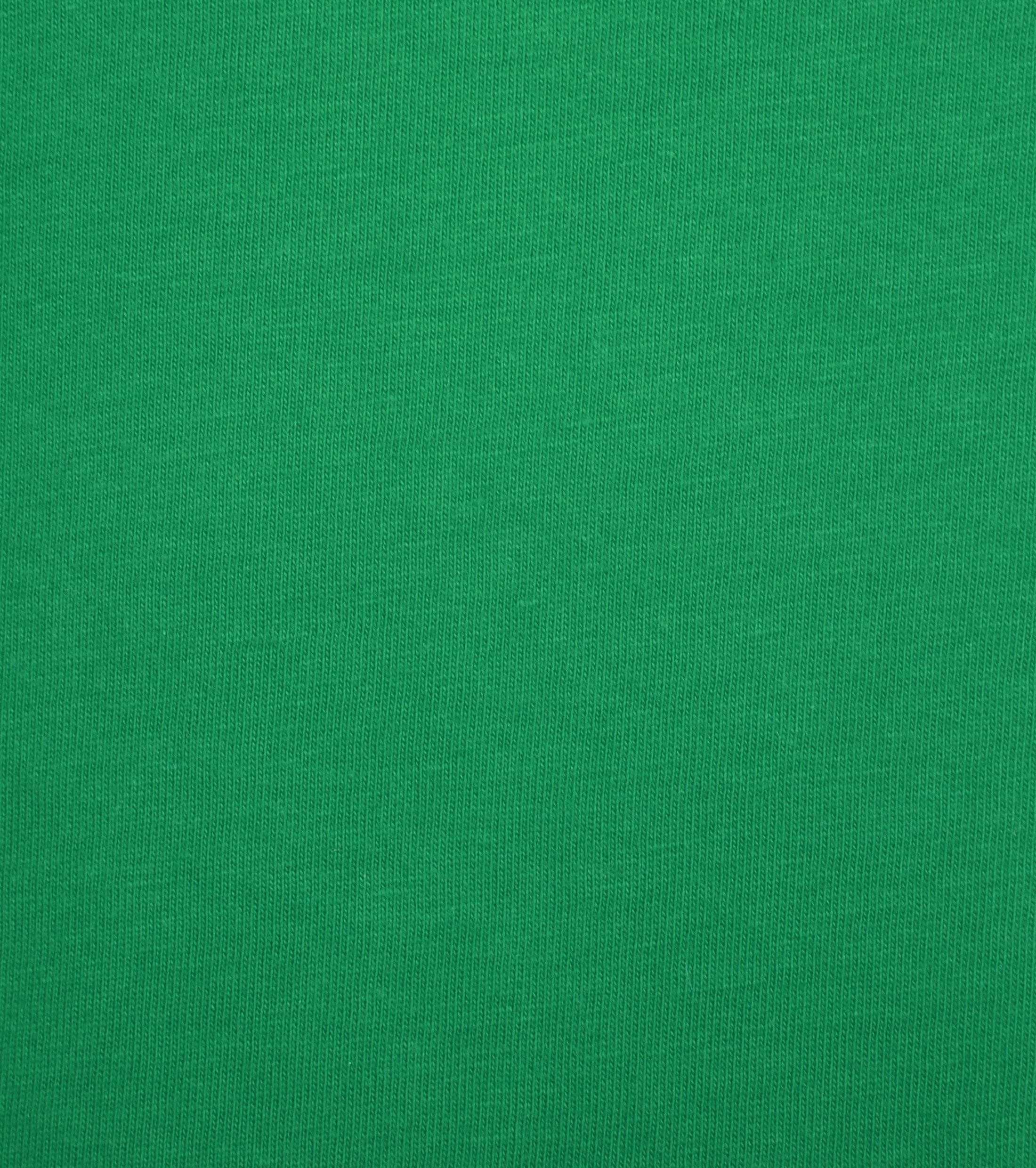 Colorful Standard T-shirt Kelly Green foto 1