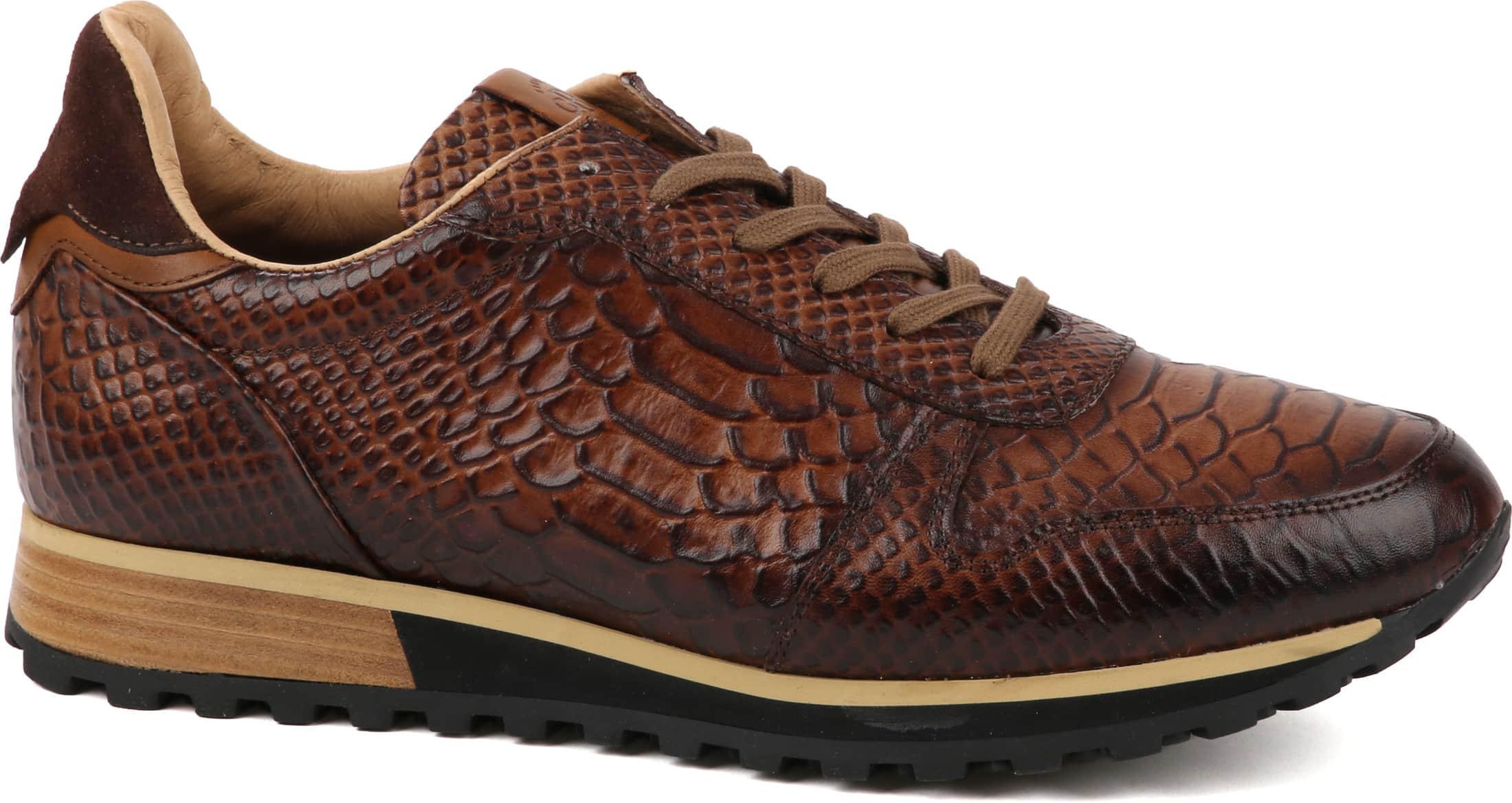 Giorgio Sneaker Anaconda Cognac foto 0