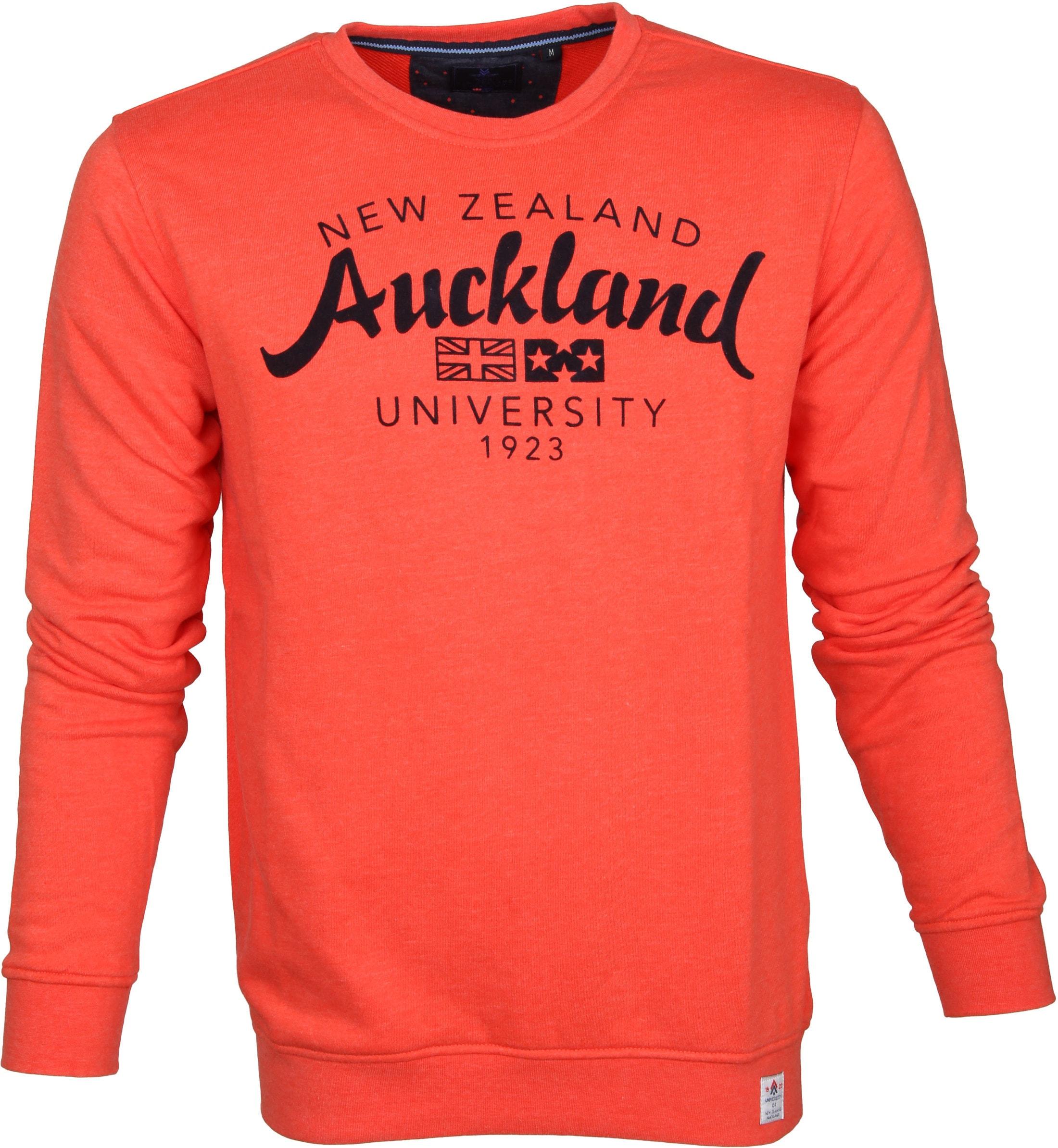 NZA Pullover Orange Logo foto 0