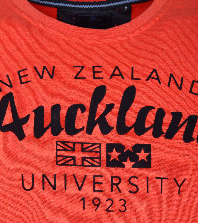NZA Pullover Orange Logo foto 3