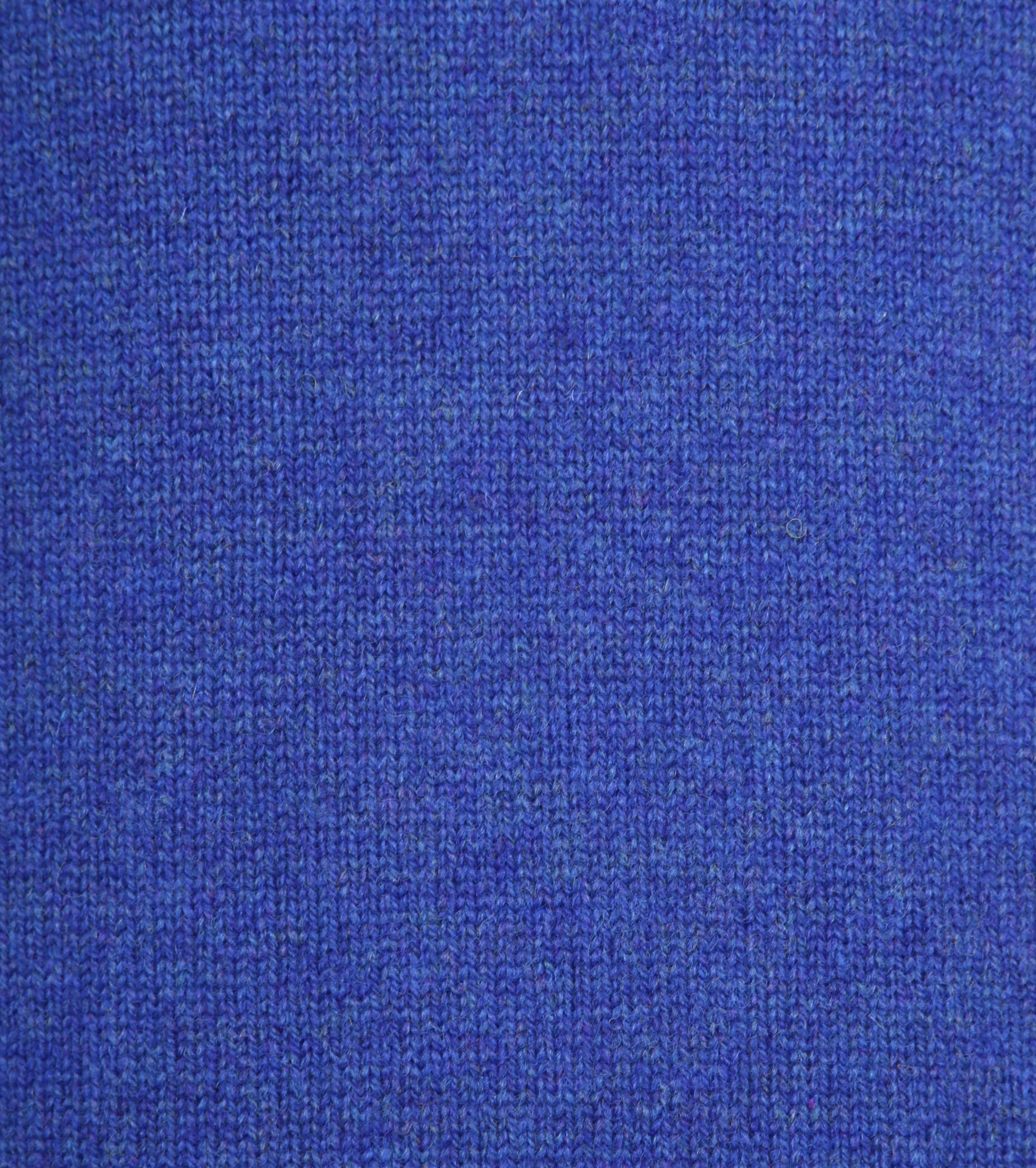 William Lockie V Persian Royal Blue foto 1